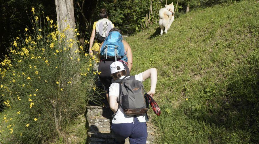 escursione-villabenini (1)